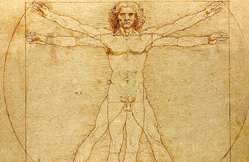 Leonardo: despullant un geni en el cinquè centenari de la seva mort