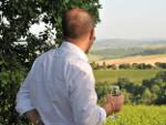 Terres de vins. Noves generacions, nous projectes i nous hàbits de consum
