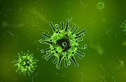 Virology in Barcelona