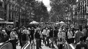 España actual: sociedad e instituciones